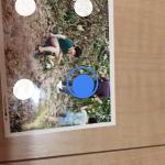 スキャナーなしでプロフィールムービー用の写真を取り込む Googleフォトスキャン