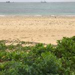 沖縄のリゾ婚へ やはり人の魅力
