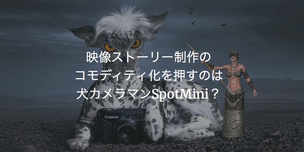 犬カメラマン